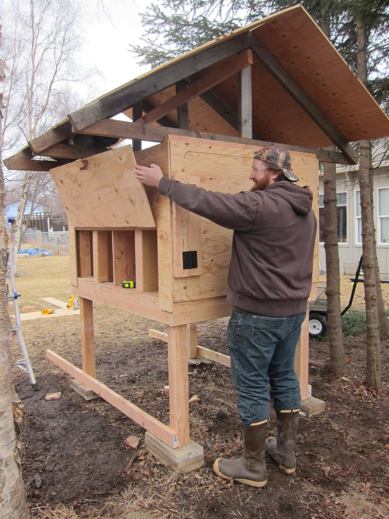 DIY chicken coop - step 4