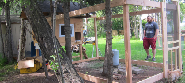 Building a DIY Backyard Chicken Coop – Part 2 - Building A Backyard Chicken Coop DIY Urban Coop Part 2