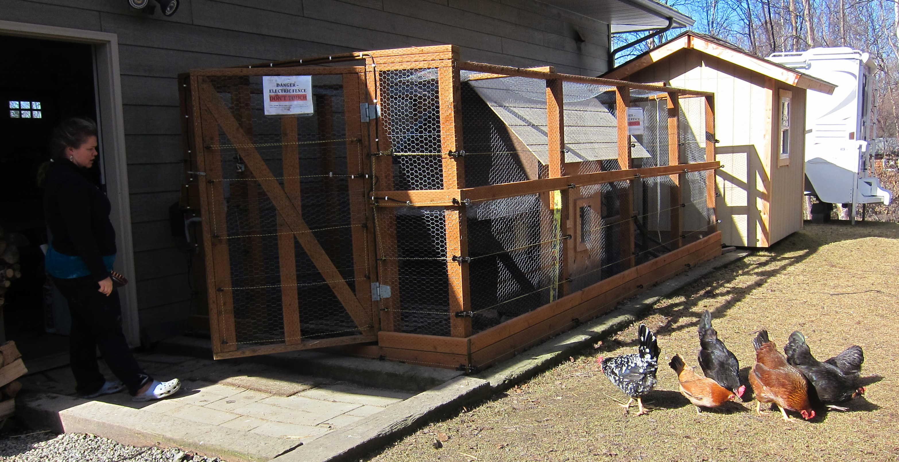 Anchorage coop with bear fence