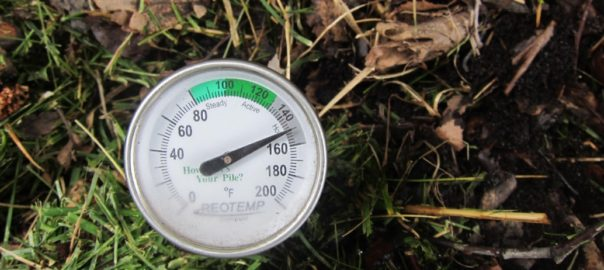 compost thermometer at 150 degrees
