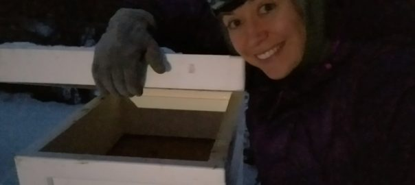 Ashley Taborsky with beehive in winter Alaska